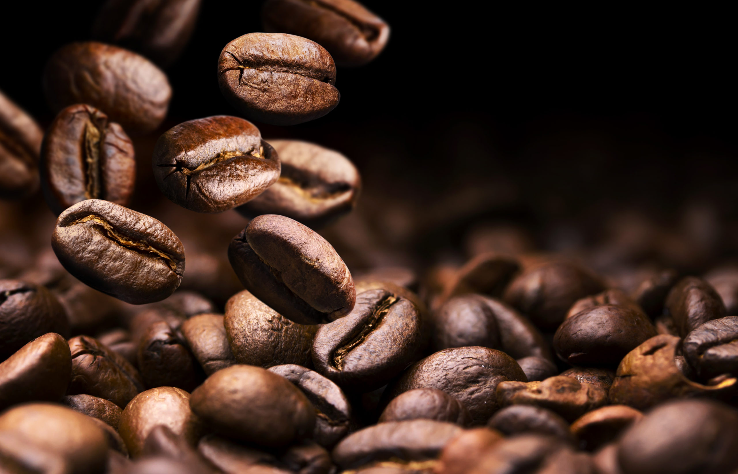 Roasted coffee beans falling on pile, black background with copy space, close up